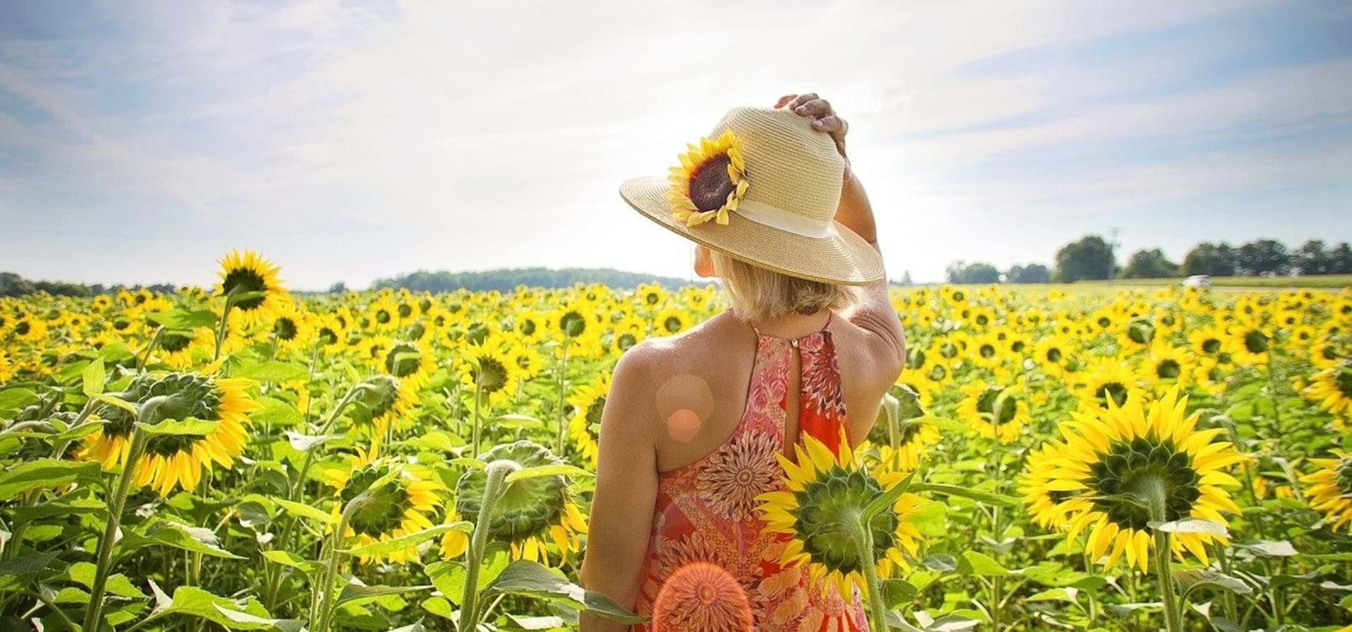 En kvinde iført sommerhat ser ud i horisonten ud over en stor solsikkemark.